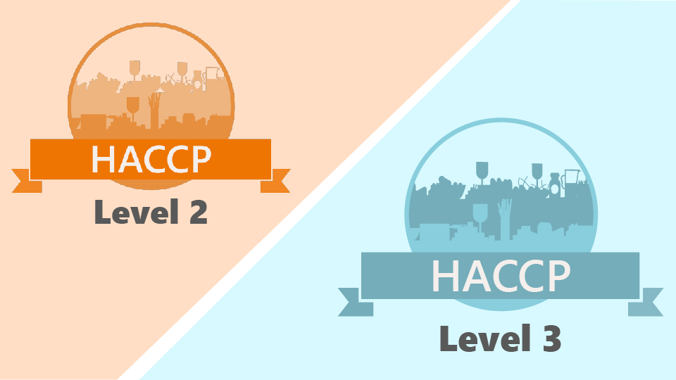 haccp-level-2-3-bundle