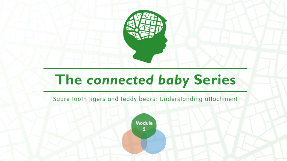 The Connected Baby Series: Sabre Tooth Tigers and Teddy Bears: Understanding Attachment