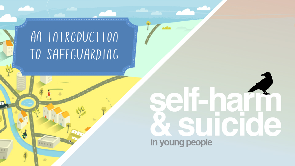 safeguarding-children-introduction-and-self-harm-bundle