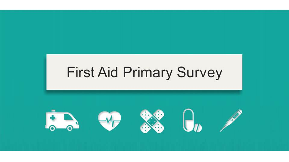 First Aid Primary Survey