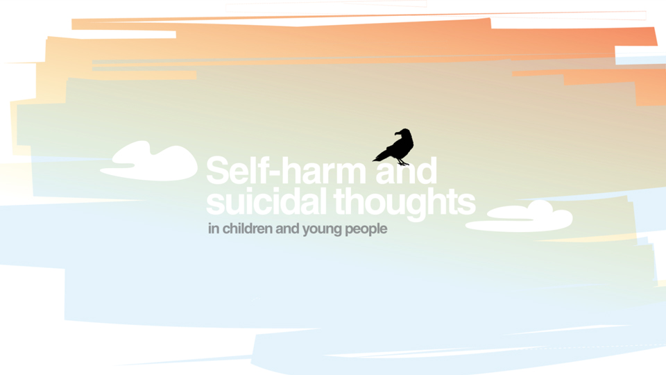 Self harm rise in young people