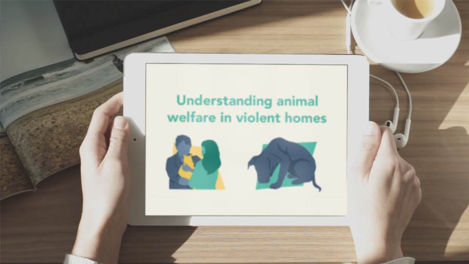 Understanding Animal Welfare in Violent Homes